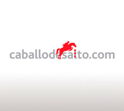 LOGOTYPE FOR COMPANY DEDICATED TO THE JUMP HORSE TRADE<br/>CABALLODESALTO.COM